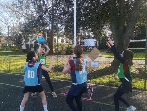 Netball Cross country Rydes Hill Prep School 9 of 9